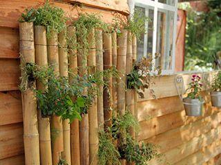 Jardín vertical con cañas