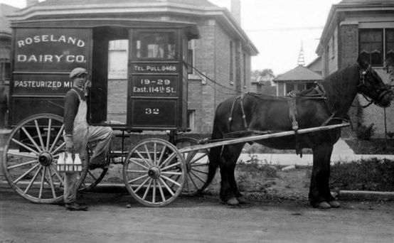 Vintage photo of horse pulling a milk cart