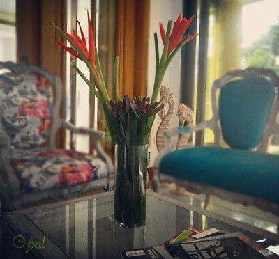 Hermoso arreglo de flores tropicales para la decoración de tus espacios tropicalflowers flowerarregement