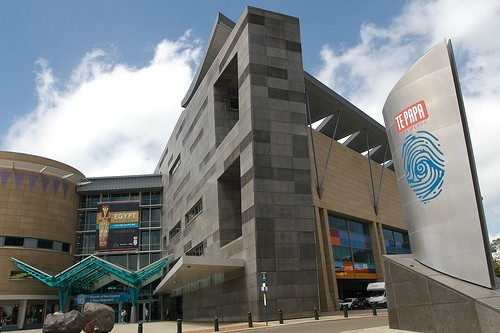 Te Papa Museum where we learnt about awesome forces, animals and maori legends.