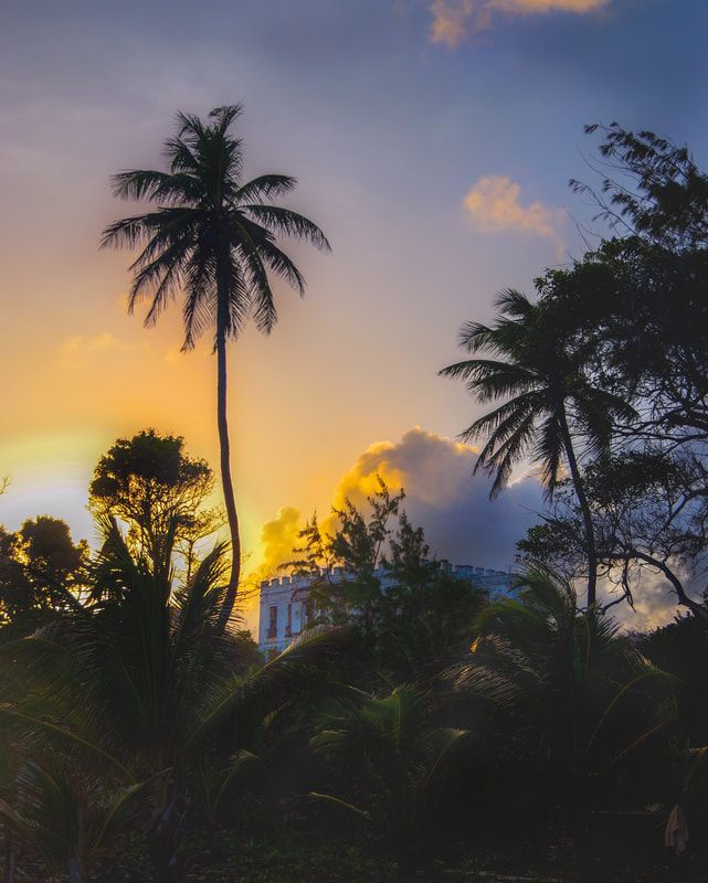 A spontaneous trip to Barbados turns into 5 incredible days on the island including visits to Andromeda Gardens, Pebbles Beach and Animal Flower Cave. WARNING - her wonderful photos are going to make your Barbados cravings kick in big time!