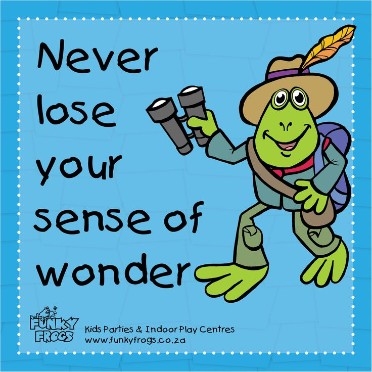 """Never lose your sense of wonder"" - #FunkyQuotes http://www.funkyfrogs.co.za/"