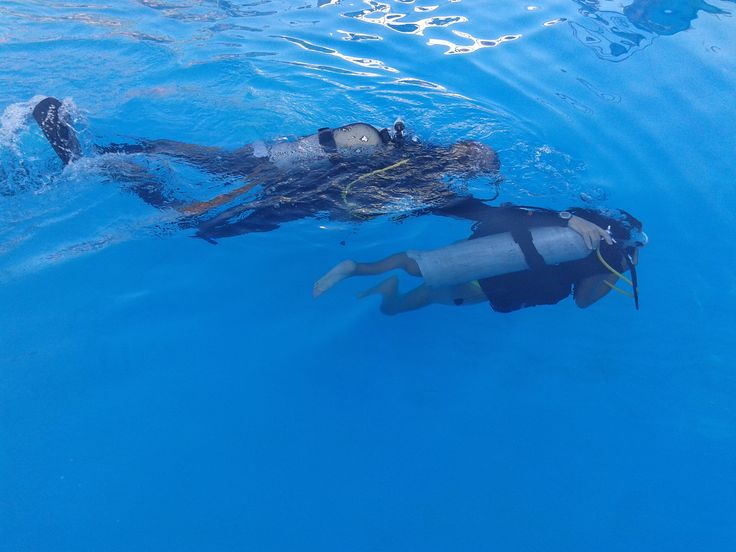 At Rea Summer Camp you can try underwater diving!