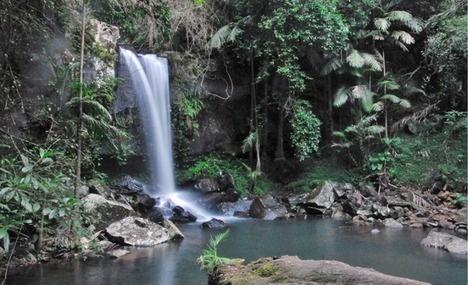 Curtis Falls Mount Tambourine
