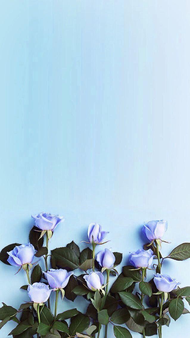 Wallpaper para iPhone – #Iphone #para #Wallpaper