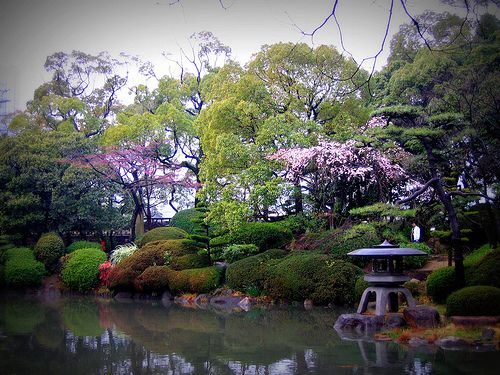 A Japanese Garden!!