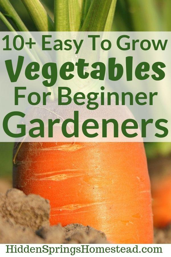 Gardening Tips Baking Soda Gardening Tips Videos Learning