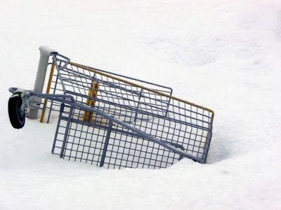 Jemina Staalon Veden vuosi 2: Ostoskärryt lumessa