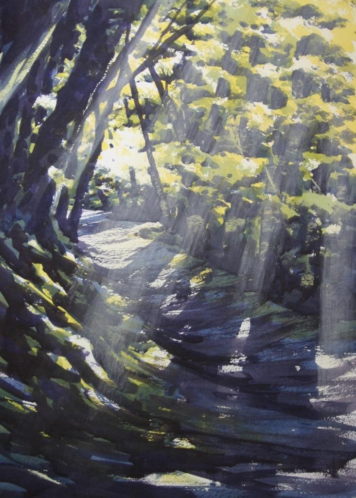Beech Path, Allen Vally