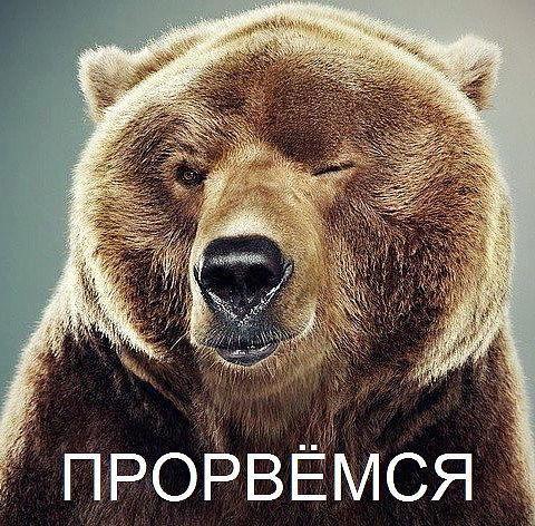 прорвемся медведь - Поиск в Google