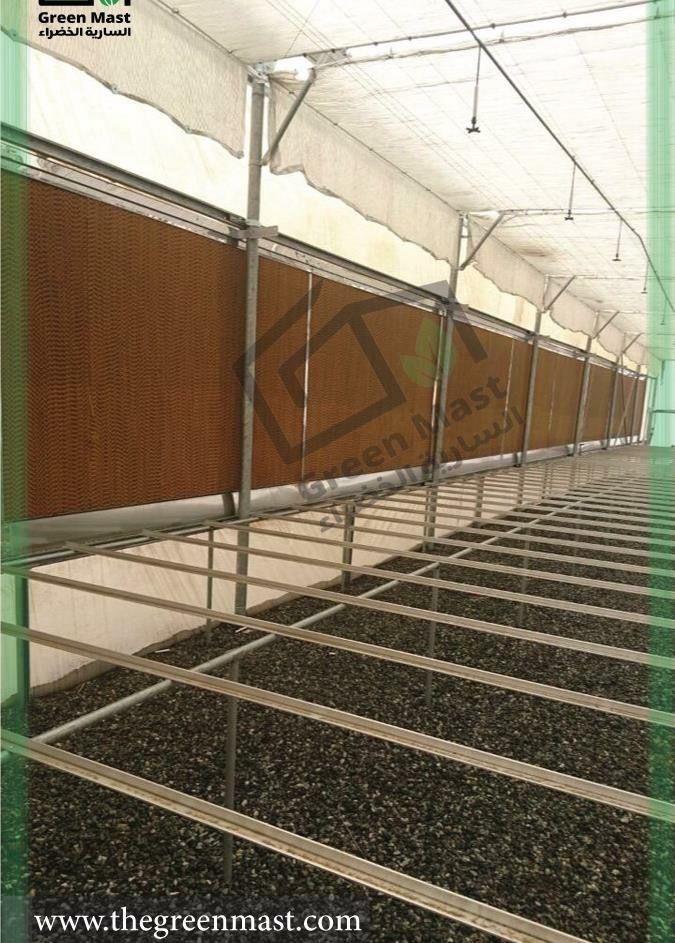 هل تعلم ان نظام التبريد الصحراوي خلايا تبريد و مراوح شفط هو استهلاك رئيسي للمياه في المحميات المبردة اذا ان الصالة الز Hydroponics System Hydroponics Stairs