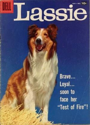 Lassie watched her when ever she was on, movies and TV
