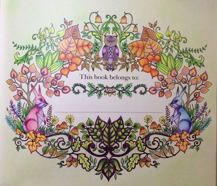 Enchanted Forest Name Page To Follow Adult ColoringColouringColoring BooksSecret