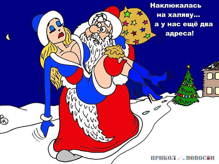 представляет прикольные поздравления с новым годом про деда мороза прокормить