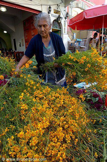 Flower vendor in Oaxaca, Mexico http://www.slrobertson.com/galleries/mexico/oaxaca/day-dead/flower-seller.htm