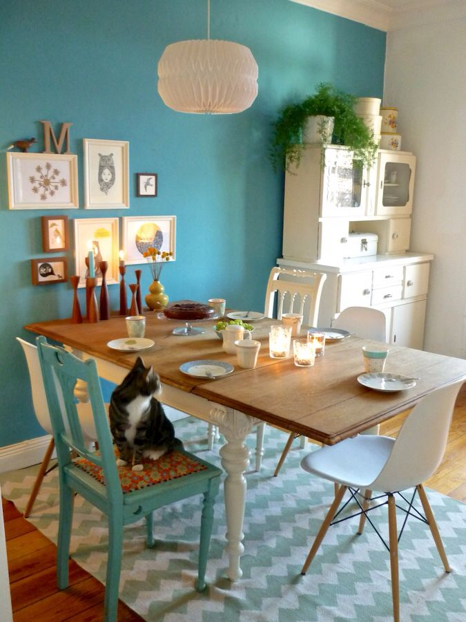 T Rkis Solebich De Turquoise Accent Wall In The Kitchen Super Cheerful