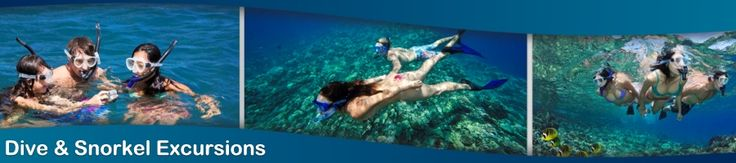 Maui Dive Shops snorkeling gear, multiple locations -  Maui Revealed:  Recommended