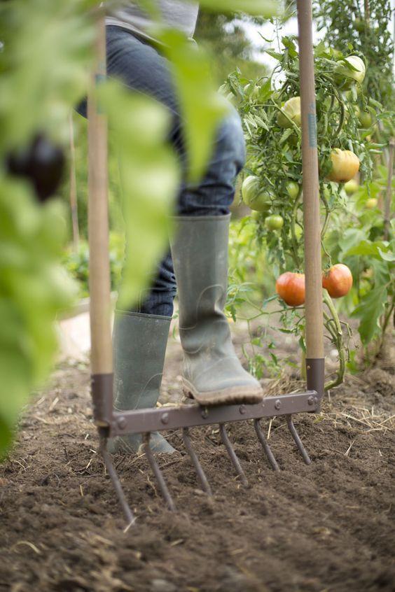 2 Instruction Pour Les Jardins Fruitiers Et Potagers