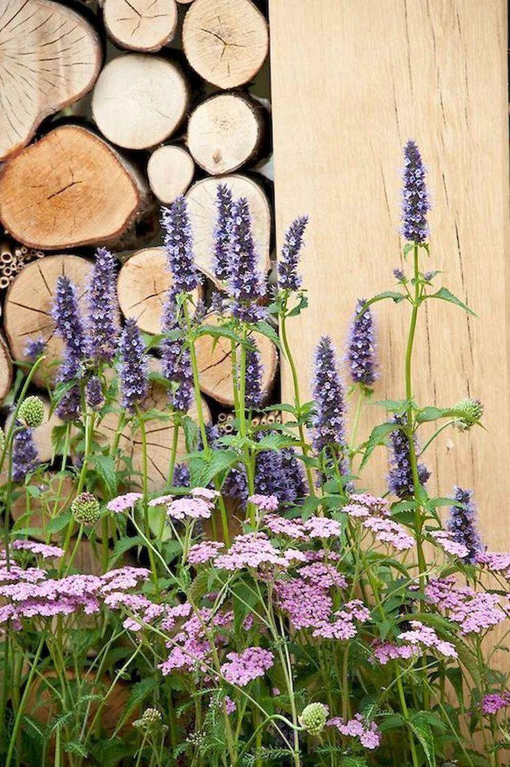 39 Schöne kleine Cottage Flowers Garden für Hint…