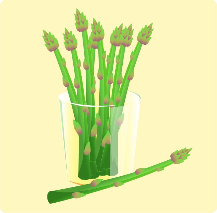 How to Blanch Asparagus in 5 Steps