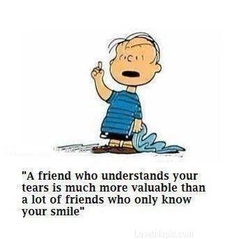 a friend quotes cute friendship quote friendship quotes friend quote linus