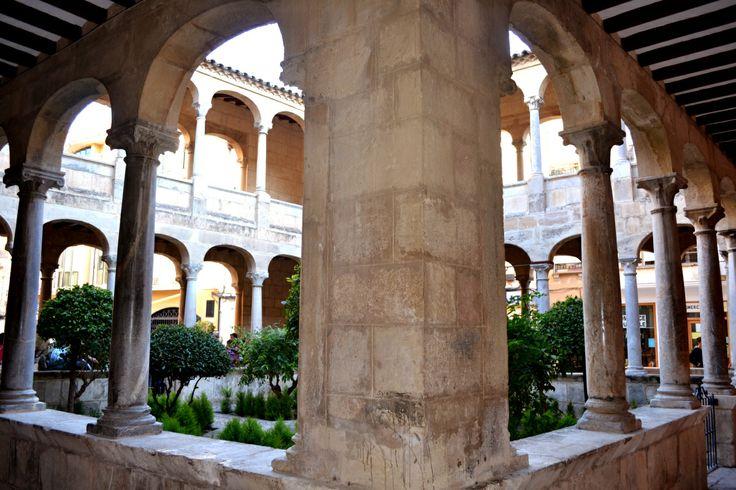 Claustro de la Catedral de Orihuela, (Alicante, España). Orihuela Cathedral (Alicante, Spain).