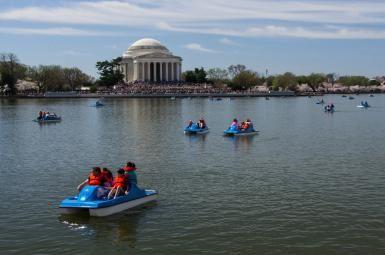 Tidal Basin Paddle Boats in Washington DC
