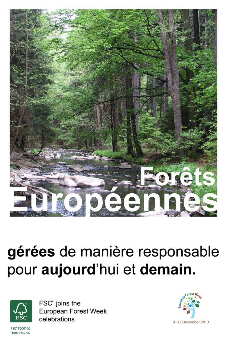 Forêts européennes – gérées de manière responsable pour aujourd'hui et demain