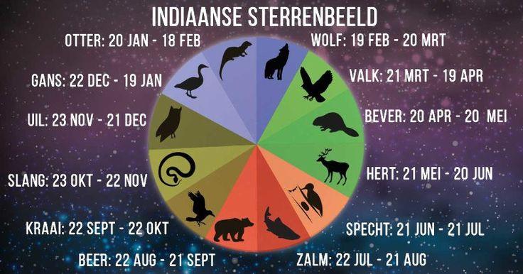 Dieren zijn een belangrijk deel van de inheemse Amerikaanse cultuur. Daarom is bijna elk denkbaar dier als symbool in de horoscoop van de Indiaanse stammen opgenomen.