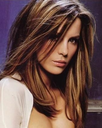 Mostly One Length - Haircut ,,,Medium Warm brown hair W/ Cool CHUNKY Highlights - Hair Color ... Best On - all Hair types ( Not Too Fine )
