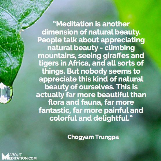 Meditation Quotes 52 Best Meditation Quotes Images On Pinterest  Meditation Quotes .