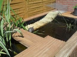 Les 114 meilleures images propos de tortue sur pinterest for Bassin exterieur pour tortue de floride