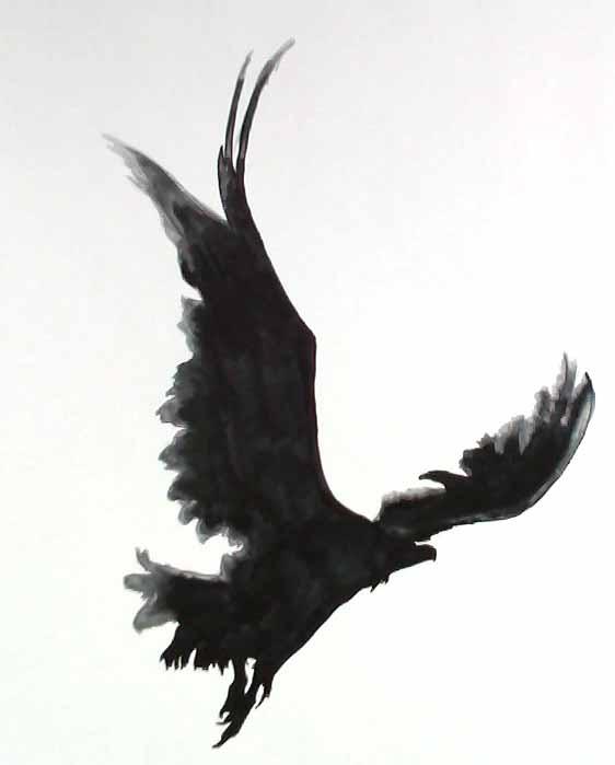 Odins Ravens Tattoo Odin s raven i am working onOdins Ravens Tattoo