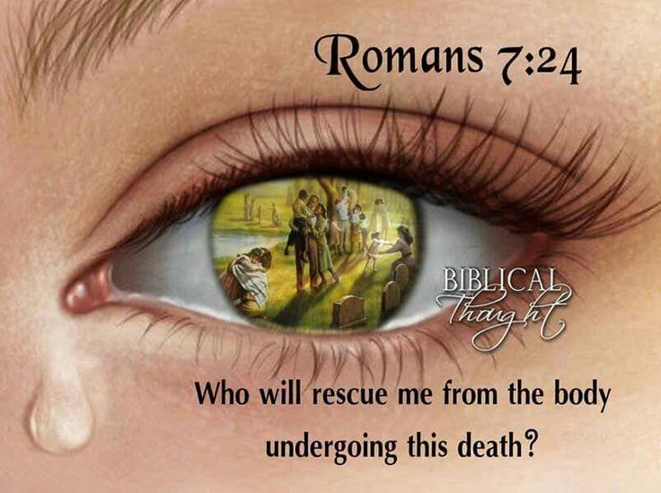 Romans 7:24. (3)