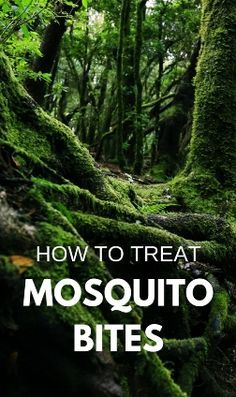 There's a good chance you get mosquito bites on summer vacation, even more for kids outdoors in backyard! Whether it's camping, hiking, trail running, in your yard, mosquito repellent may not work. Tips on how to treat mosquito bites, there are DIY homema