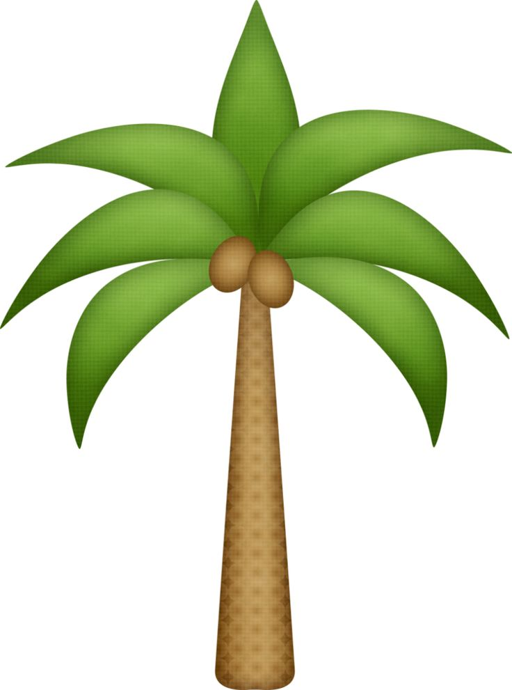 29 best palm tree clip art images on pinterest palm trees palms rh pinterest com palm tree clip art free images palm tree clip art black and white
