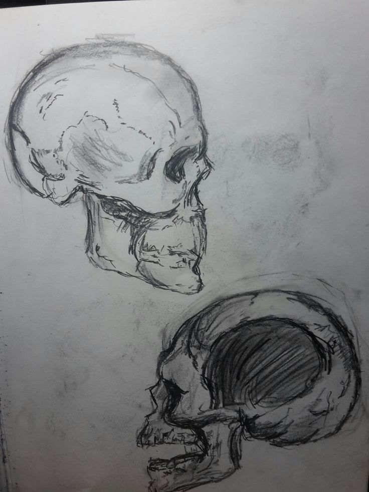 Day 4--------- A sketch a day #ASketchADay #tatoos #Skulls #sketch