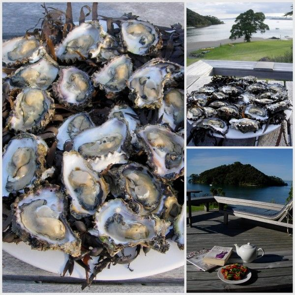 The    Week    That    Was   at   Coal   Mine  Cottage: Oysters