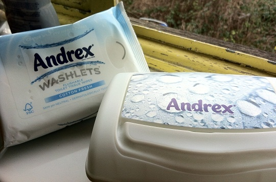 Andrex Washlets - Hands on detailed review. Bidet in a box ...