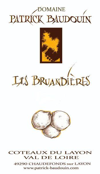 Domaine Patrick Baudouin Coteaux du Layon Les Bruandières