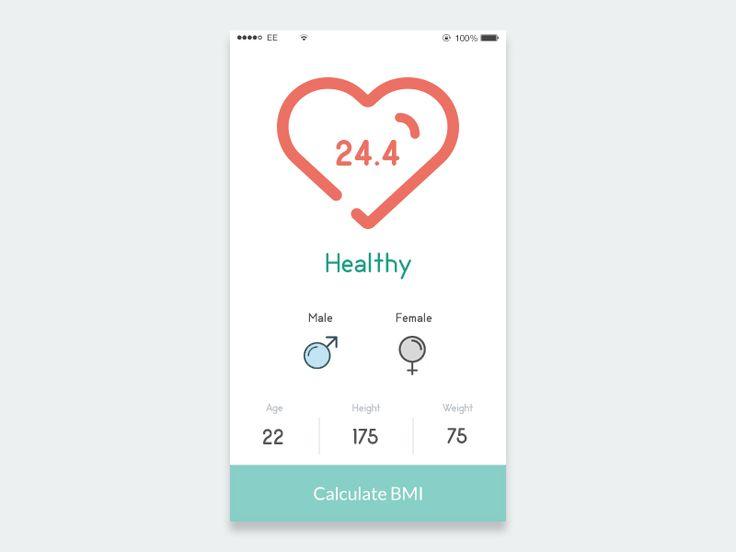BMI Calculator - Daily 004