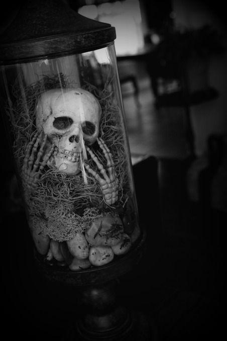 17 best images about skulls on pinterest alchemy skull for Alchemy skull decoration