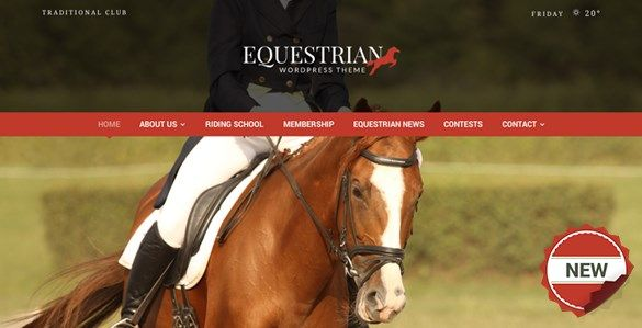 Download Equestrian  Horses & Stables WordPress Theme v4.2.2 Download Equestrian  Horses & Stables WordPress Theme v4.2.2 Latest Version
