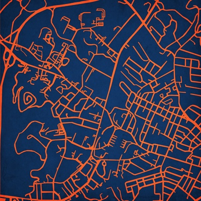 Map of University of Virginia by City Prints Map Art