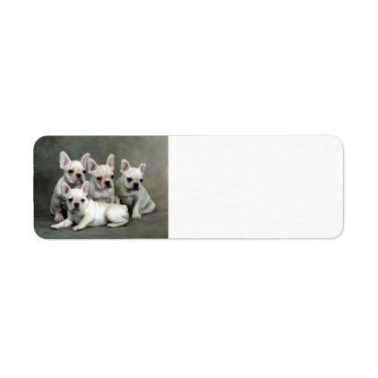 #Cute French Bulldog Puppies Label - #Petgifts #Pet #Gifts #giftideas #giftidea #petlovers
