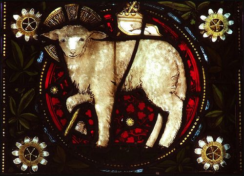 lamb stained glass