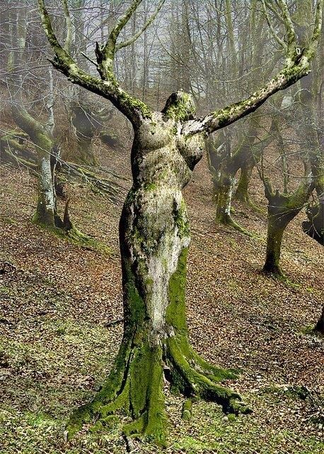 Amazing tree sculpture!!! Bebe'!!! Looks so natural...!!!