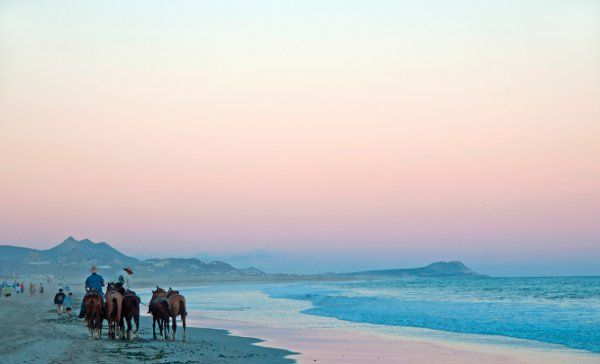 Horse back riding tours are offered throughout Mexico. Lead by local cowboys, you can chose your destination, whether it be a beach, mountain, or desert trail ride. Favorite Things to Do in Mexico, Honeymoon Photos by WeddingWire Travel on WeddingWire