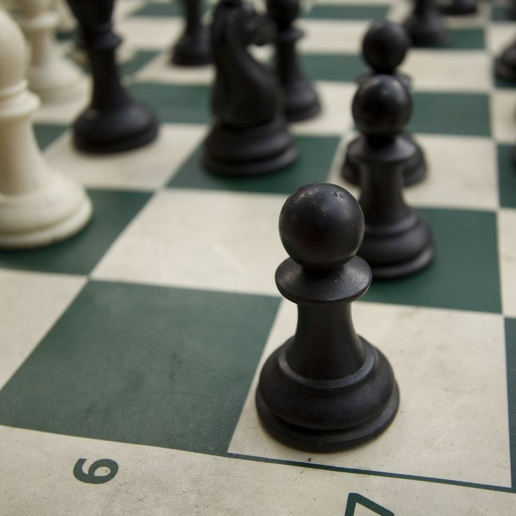 Learn Chess Openings, Tom Lynch, Learn Chess, Chess Database Online- best way to learn chess skills and tactics.