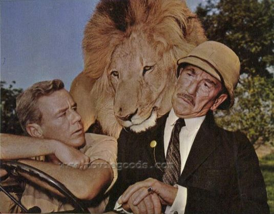marshall thompson, richard haydn with clarence the cross-eyed lion   Daktari TV Show
